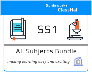 SS1 All Subjects Bundle
